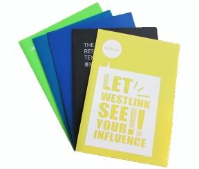 龙华PP报告夹 透明磨砂两页夹 塑料资料夹